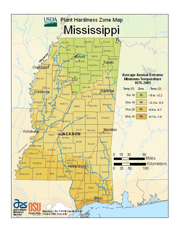 Mississippi Plant Hardiness Zones Map