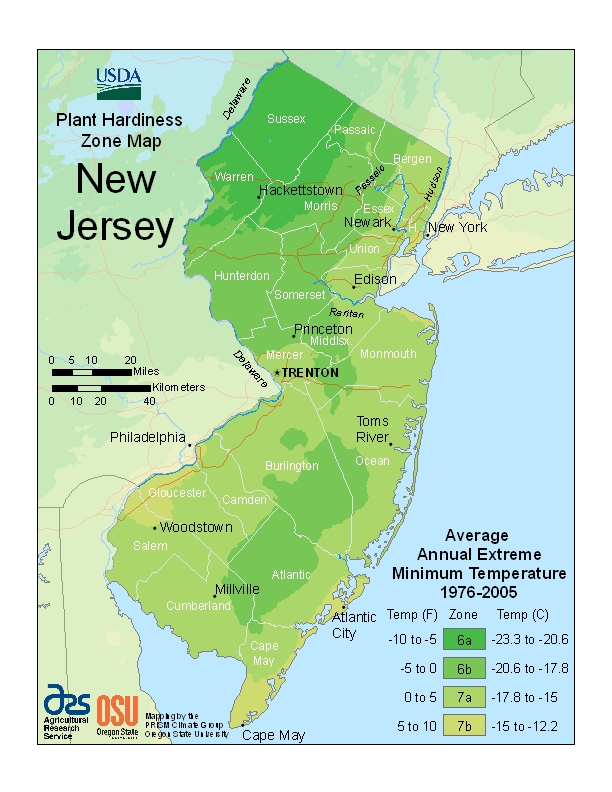 New Jersey Plant Hardiness Zones Map