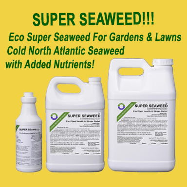 Eco Super Seaweed for Lawn, Gardens, and Soil
