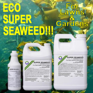 Eco Super Seaweed
