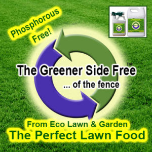 Greener Side All In One Phosphorous Free Liquid Fertilizer