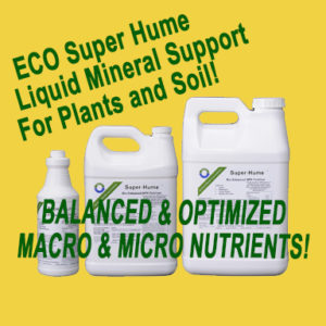 ECO Super Hume