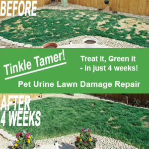 Tinkle Tamer Pet Urine Lawn Damage Repair